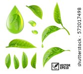 realistic vector set of... | Shutterstock .eps vector #572017498