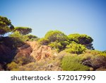 hills and trees natural sun... | Shutterstock . vector #572017990