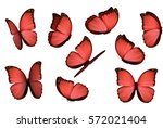 Stock vector set colorful isolated butterflies view insects morpho amathonte vector illustration 572021404