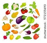 vegetables icons set.... | Shutterstock .eps vector #572155693