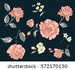 vector flowers illustration   Shutterstock .eps vector #572170150