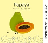 ripe papaya on a light... | Shutterstock .eps vector #572203969