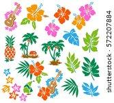 hibiscus flower illustration | Shutterstock .eps vector #572207884
