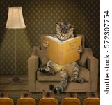 The Clever Cat Is Reading Fair...