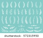 hand drawn set of rustic... | Shutterstock .eps vector #572315950