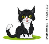 picture of a small black and... | Shutterstock .eps vector #572363119