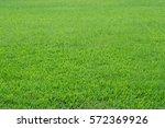 pattern of green grass field... | Shutterstock . vector #572369926