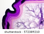 beautiful crystals  minerals... | Shutterstock . vector #572389210