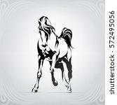 Stock vector vector silhouette of a horse 572495056