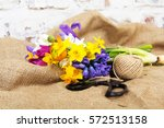 spring cut flower arrangement... | Shutterstock . vector #572513158