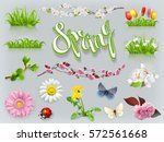 spring set. grass and flowers... | Shutterstock .eps vector #572561668
