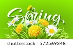 inscription spring time on... | Shutterstock .eps vector #572569348