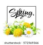 inscription spring time on... | Shutterstock .eps vector #572569366