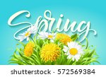 inscription spring time on... | Shutterstock .eps vector #572569384