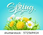 inscription spring time on... | Shutterstock .eps vector #572569414
