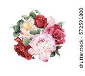 bouquet of roses  watercolor ... | Shutterstock . vector #572591800