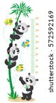 meter wall or height chart with ...   Shutterstock .eps vector #572592169