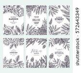 floral card design templates.... | Shutterstock .eps vector #572643349