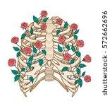 illustration of human rib cage... | Shutterstock .eps vector #572662696