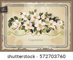 greeting card with jasmine... | Shutterstock .eps vector #572703760