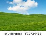 Tuscany Landscape  Beautiful...
