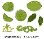 set of vector hand drawn lime.... | Shutterstock .eps vector #572785294
