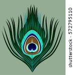 peacock feather | Shutterstock .eps vector #572795110