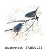 digital painting of  blue gray...   Shutterstock . vector #572801233