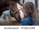 Stock photo cute girl feeding her horse in paddock 572811289