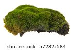 Green Moss Isolated On White...