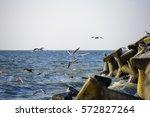 summer landscape at the vadu... | Shutterstock . vector #572827264