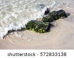 green moss stuck on stone... | Shutterstock . vector #572833138