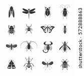 Monochrome Insects Silhouettes...