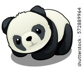 plush toy panda bear isolated... | Shutterstock .eps vector #572889964