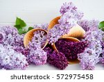 purple flowers of lilac  in ice ... | Shutterstock . vector #572975458