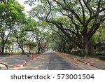 trees tunnel road  bangkok... | Shutterstock . vector #573001504