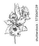 tropical white orchid flower... | Shutterstock . vector #573069139