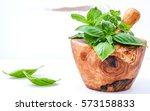 alternative medicine fresh... | Shutterstock . vector #573158833
