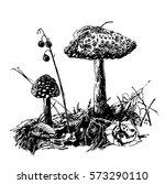 drawing is not edible mushroom...   Shutterstock .eps vector #573290110