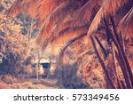 Autumn Yellow Palm Jungle