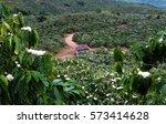 amazing scene at vietnamese... | Shutterstock . vector #573414628