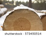 Closeup Of Log Covered With Snow
