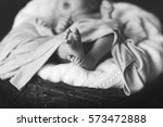newborn baby in a basket | Shutterstock . vector #573472888