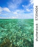 coral scape at phi phi island... | Shutterstock . vector #57354004