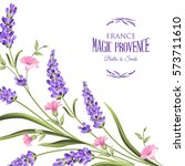 bunch of lavender flowers on a... | Shutterstock .eps vector #573711610