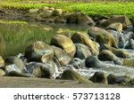 close view of rock in river... | Shutterstock . vector #573713128