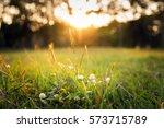 summer grass meadow motion blur ... | Shutterstock . vector #573715789
