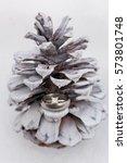 white pinecone holding wedding... | Shutterstock . vector #573801748