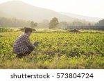 farmer man read or analysis a... | Shutterstock . vector #573804724