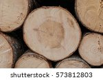 bunch of felled and cut trees | Shutterstock . vector #573812803